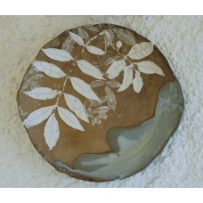 Wall Piece - Common Ash 'Fraxinus'
